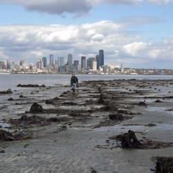 Luna Park Pilings and Seattle Skyline
